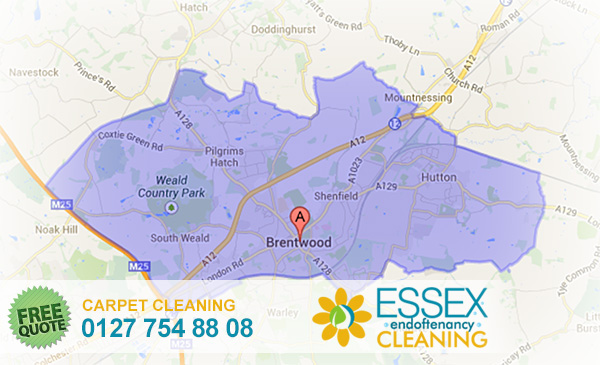 image of carpet cleaning Brentwood