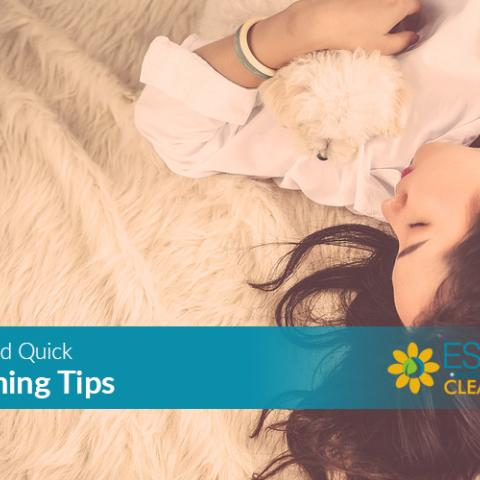 easy cleaning tips