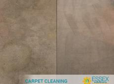 image of carpet cleaning essex